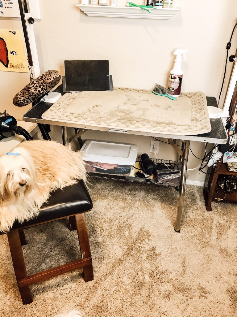 I love this table and can't imagine trying to brush and groom my dogs without it.