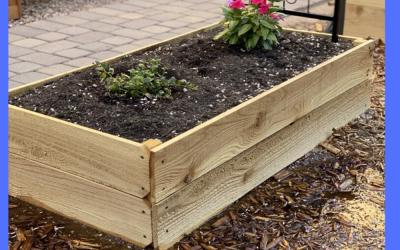 Easy and Affordable Garden Box